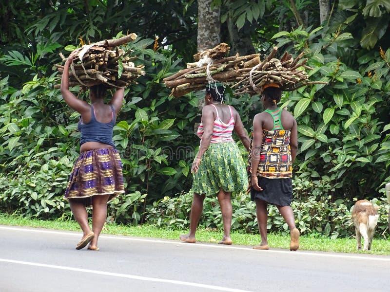 Kvinnor som bär trä arkivfoto