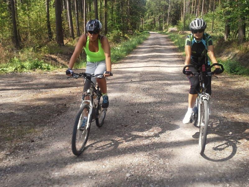 Kvinnor som cyklar i trän royaltyfria bilder