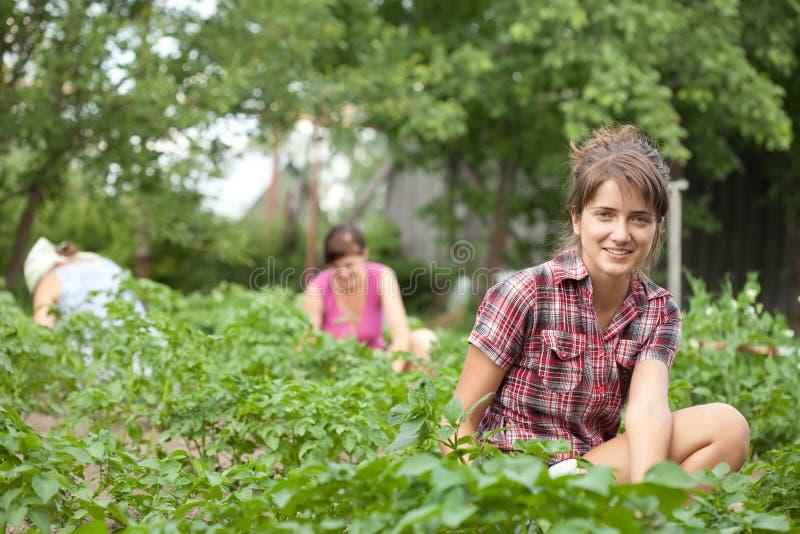 Kvinnor som fungerar i henne som är trädgårds- royaltyfri fotografi