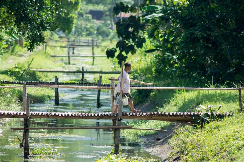 Kvinnor som går ovanför bambubrigen i kalidawir Indonesien arkivbilder