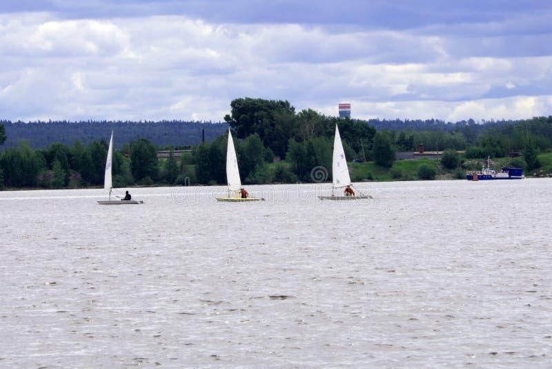 Kvinnor som seglar på regatta, svävar ner vinden royaltyfri illustrationer