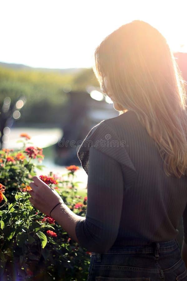 Kvinnor tillbaka sköt att rymma blomman med solnedgångljus royaltyfri foto