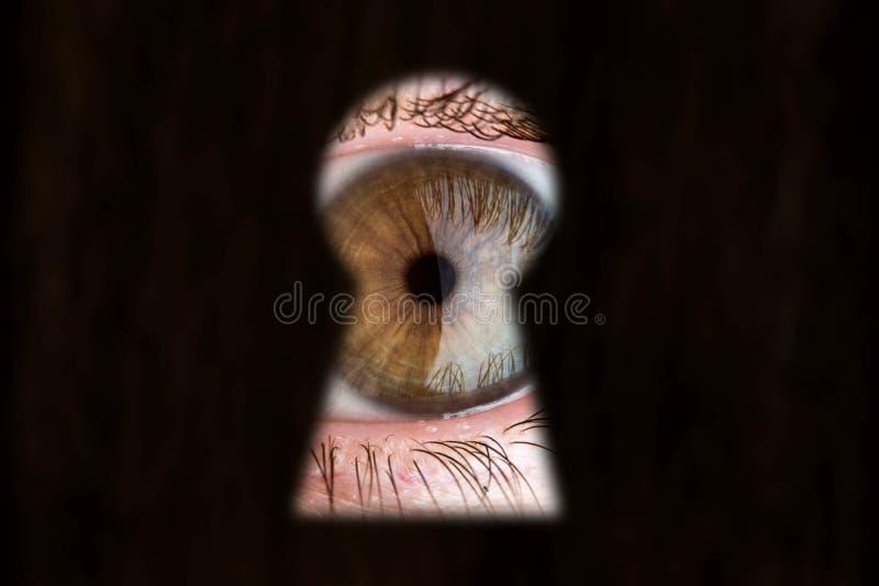 Kvinnors bruna öga som ser till och med nyckelhålet Begrepp av voyeurism, kuriositet, stalkeren, bevakning och säkerhet royaltyfri fotografi