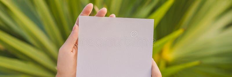 Kvinnors händer i en tropisk bakgrund som rymmer ett skyltpapper, modellBANER, LÅNGT FORMAT royaltyfria bilder