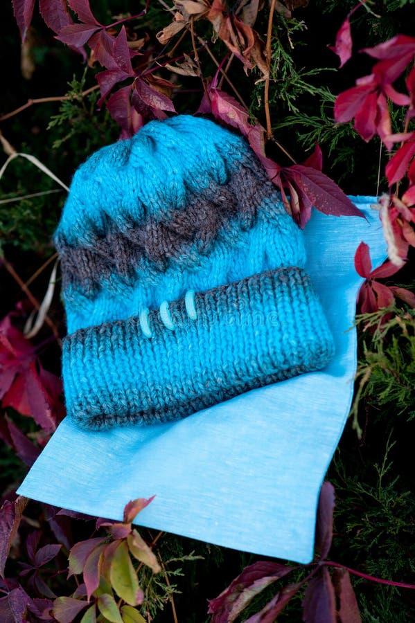 Kvinnors härlig varm ull stack hatt med ett halsdukskott i naturligt ljus royaltyfri bild