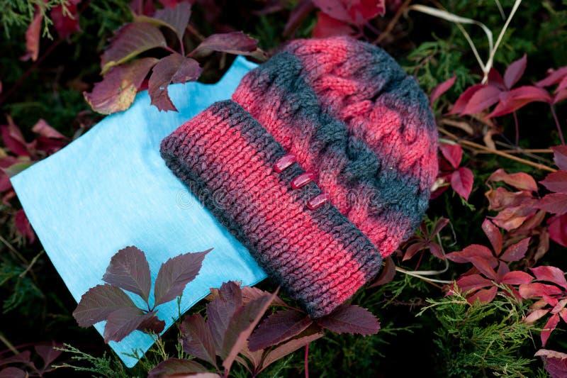 Kvinnors härlig varm ull stack hatt med ett halsdukskott i naturligt ljus arkivbilder