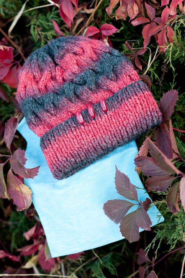 Kvinnors härlig varm ull stack hatt med ett halsdukskott i naturligt ljus arkivfoto