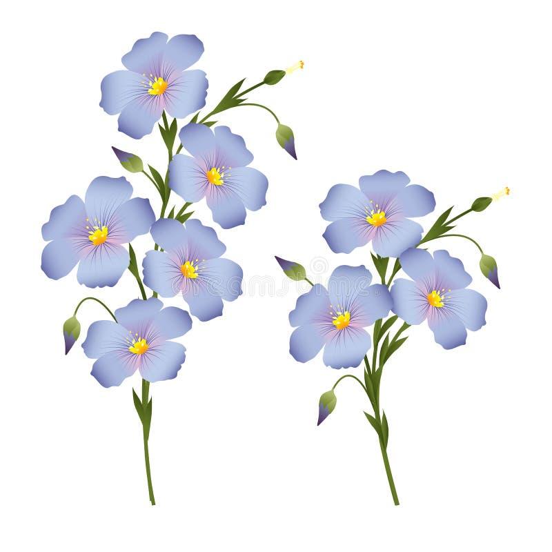 Kvistar av blomninglin, designbeståndsdel för etiketter, packagi royaltyfri illustrationer