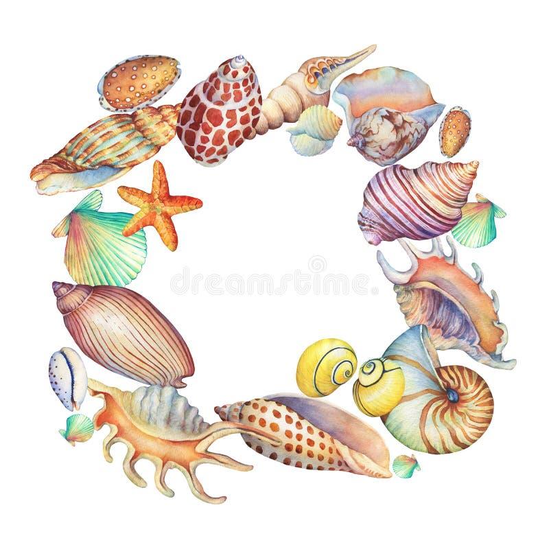 Kwadratowa rama z podwodnymi życie przedmiotami Morski projekt ilustracji