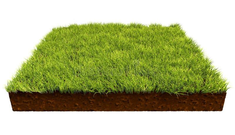 Kwadratowy kawałek ziemi z zieloną trawą royalty ilustracja
