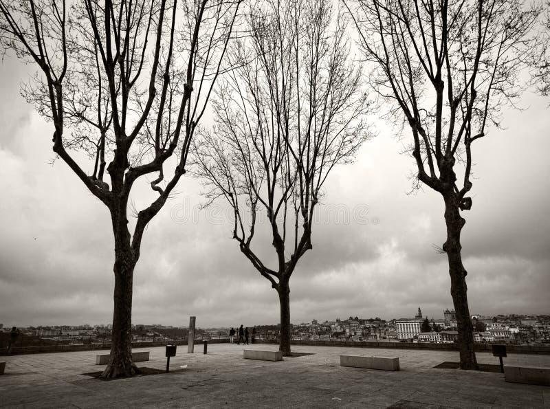 Kwadraty miasto Porto Portugalia fotografia stock
