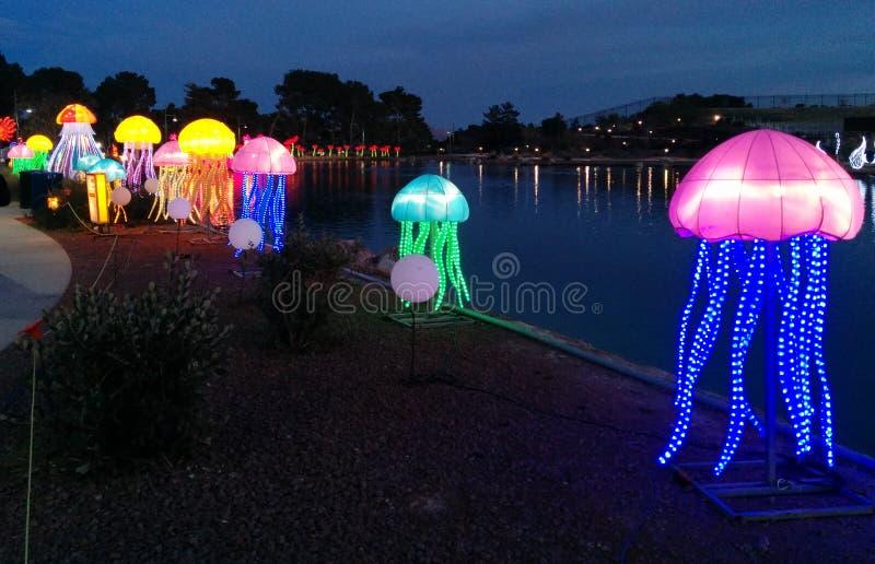 Kwallen naast een meer bij Chinees lantaarnfestival stock fotografie