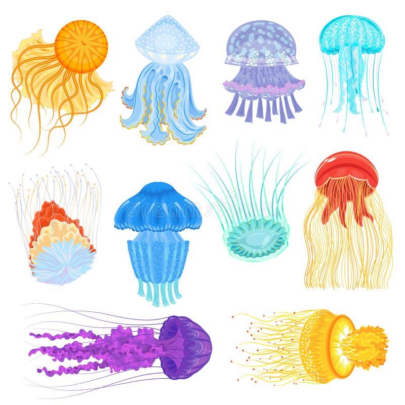 Kwallen vector oceaankwallen en onderwater netel-vissen illustratiereeks van gelatine-achtige gloeiende kwal in overzees stock illustratie