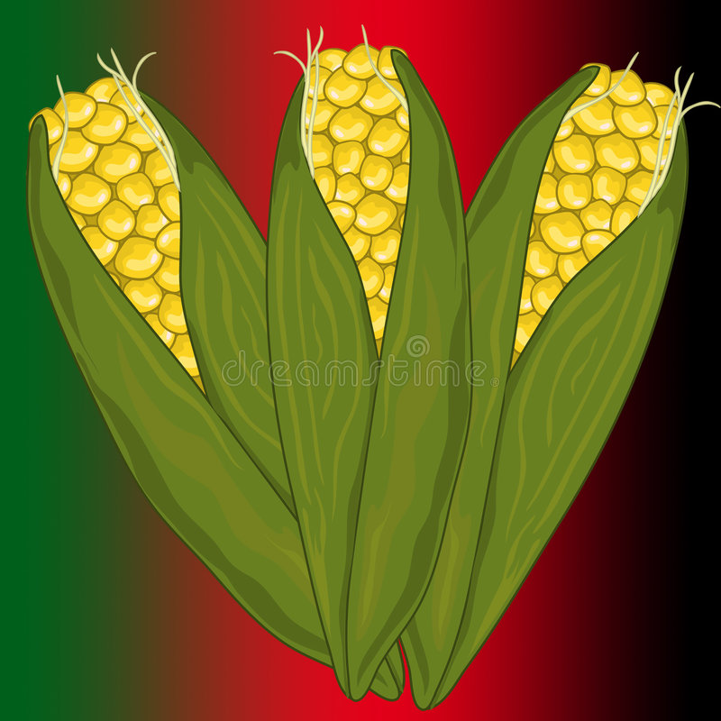 kwanza corn2 vektor illustrationer
