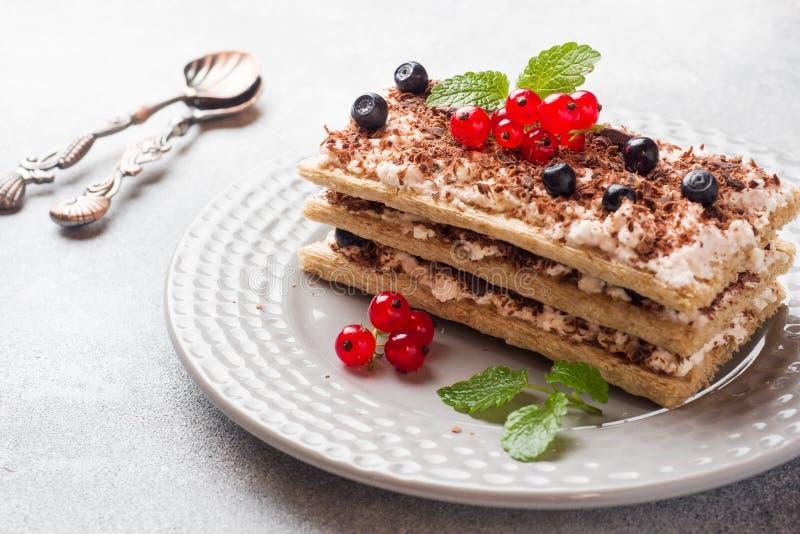 Kwarkdessert van knapperige dieetbrood, gestremde melk en bosbessen met rode aalbessen Selectieve nadruk royalty-vrije stock foto's