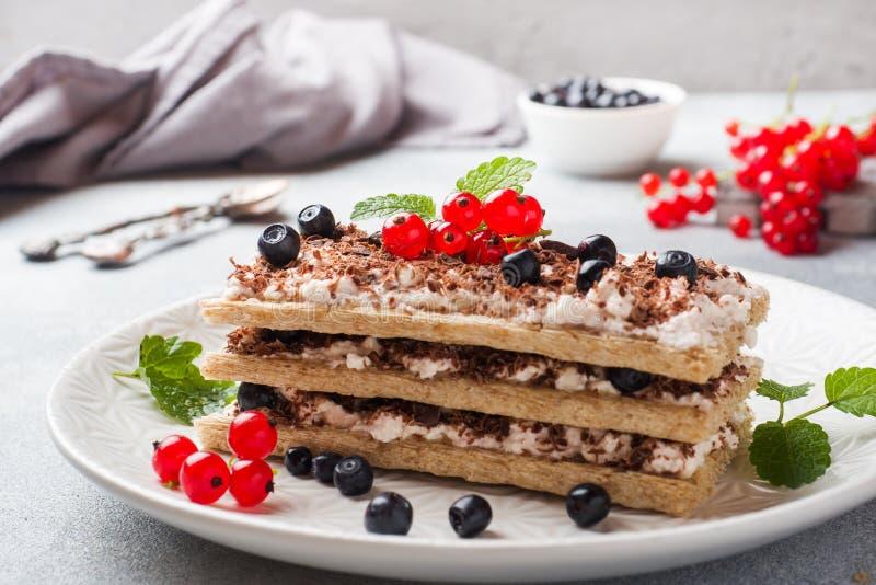 Kwarkdessert van knapperige dieetbrood, gestremde melk en bosbessen met rode aalbessen Selectieve nadruk royalty-vrije stock foto