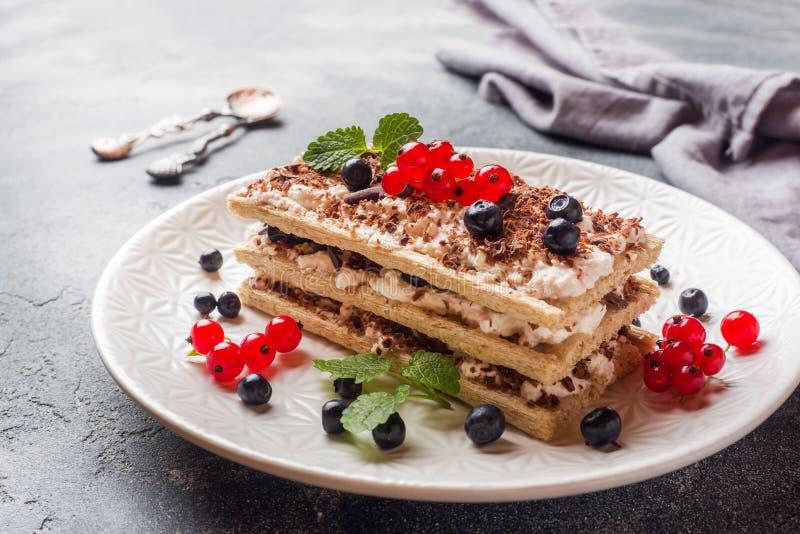 Kwarkdessert van knapperige dieetbrood, gestremde melk en bosbessen met rode aalbessen Selectieve nadruk stock afbeeldingen