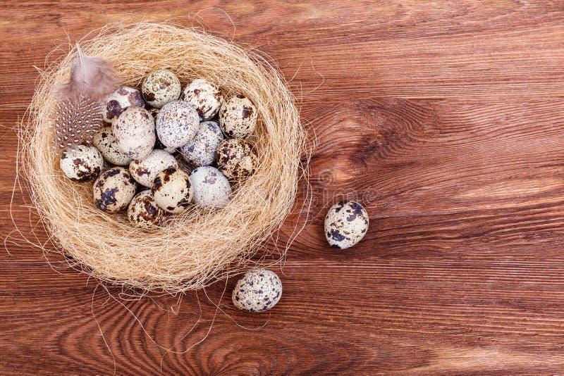 Kwartelspaaseieren met en veren in nest op houten lijst, exemplaarruimte De lente, Pasen, gezond natuurvoedingconcept royalty-vrije stock afbeelding