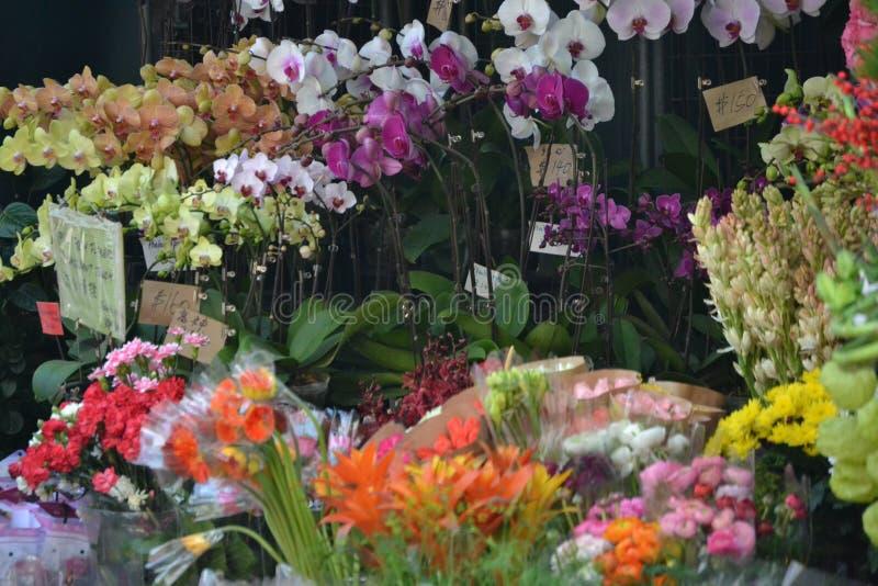 Kwiaciarnia Hong Kong zdjęcie stock