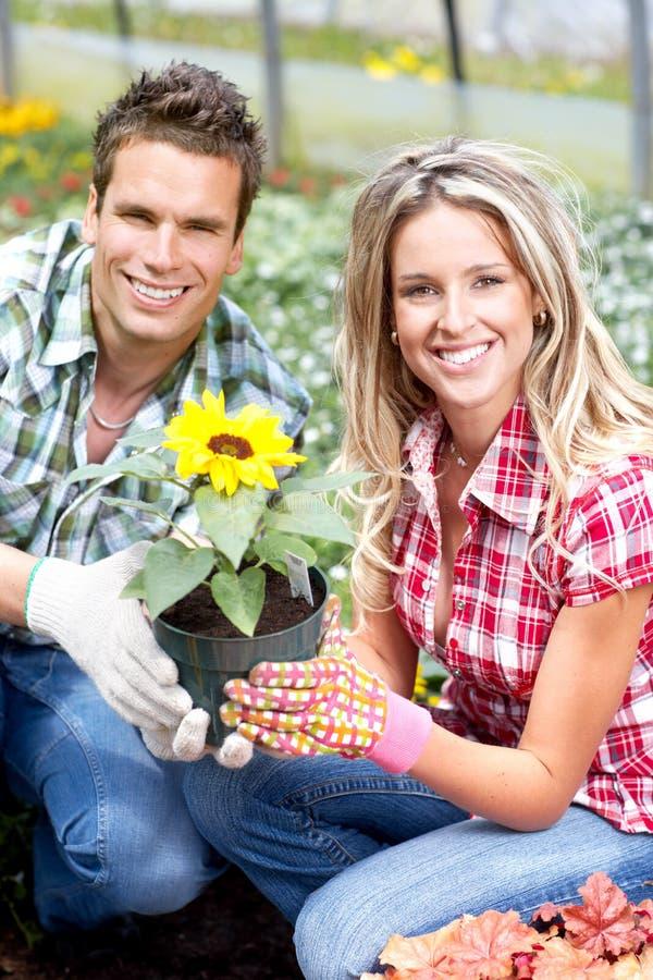 Download Kwiaciarnie zdjęcie stock. Obraz złożonej z cieplarnia - 12703728