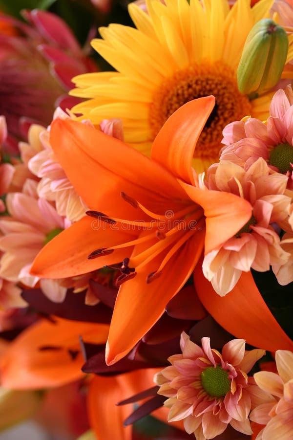 kwiaciasta świetność fotografia stock