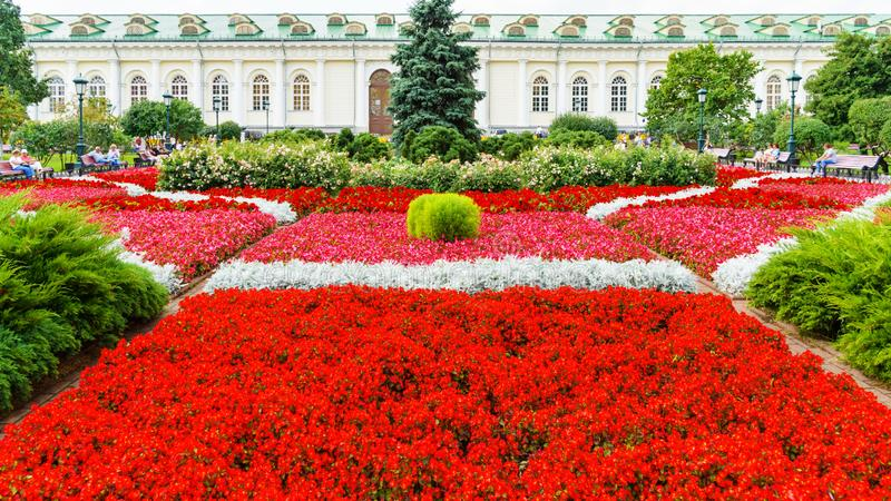 Kwiatów łóżka blisko Manezh, Moskwa, Zaryadye park, Moskwa zdjęcia stock