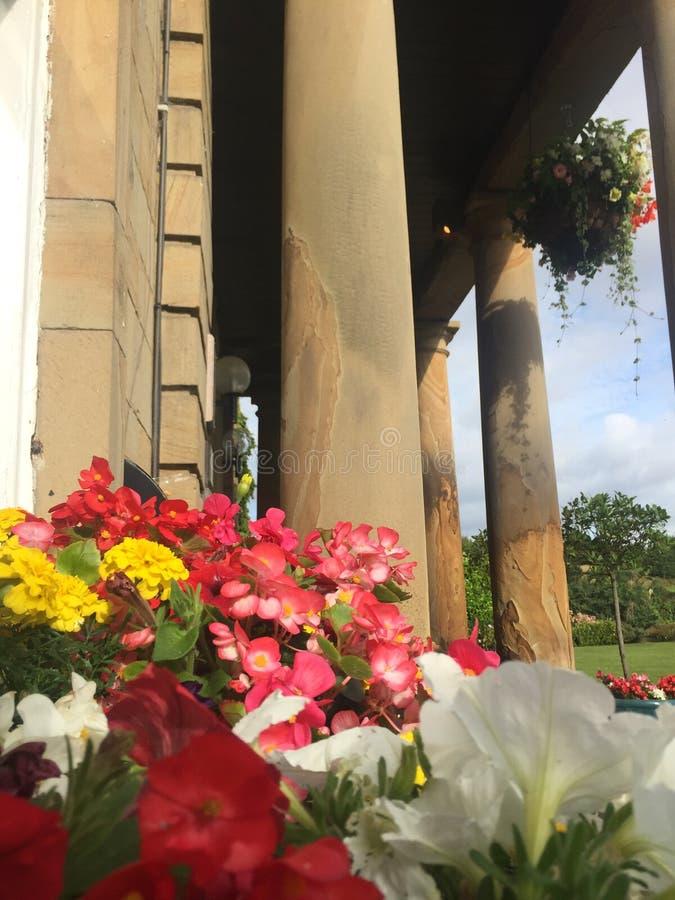 Kwiatów garnki wypełniający z czerwieni i pomarańcze kwiatami obrazy royalty free