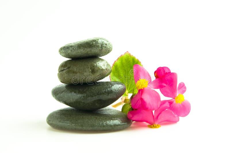 kwiatów kamienie obrazy stock