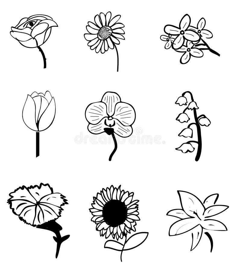 Kwiatów nakreślenia royalty ilustracja