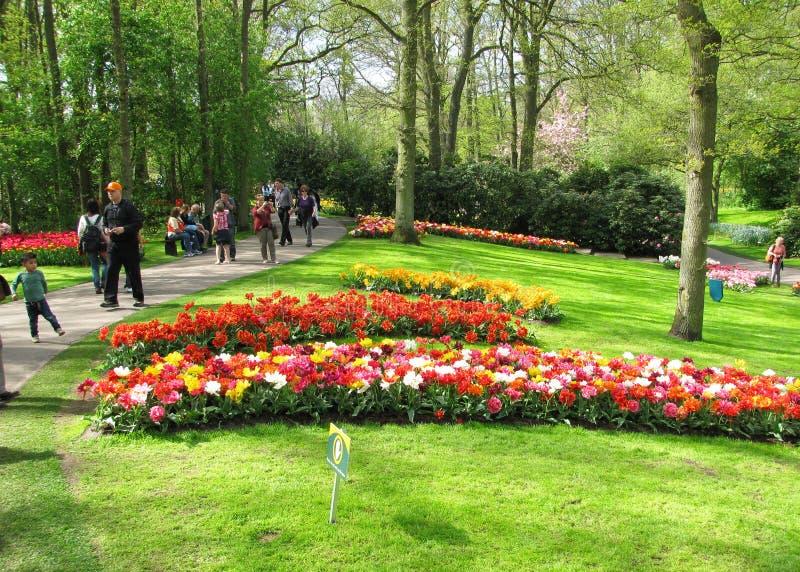 Kwiatów parkowi goście fotografia stock