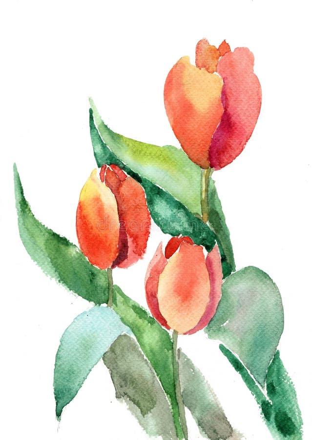 kwiatów piękni tulipany royalty ilustracja