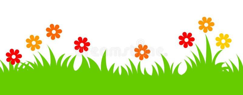 kwiatów trawy chodnikowa wiosna
