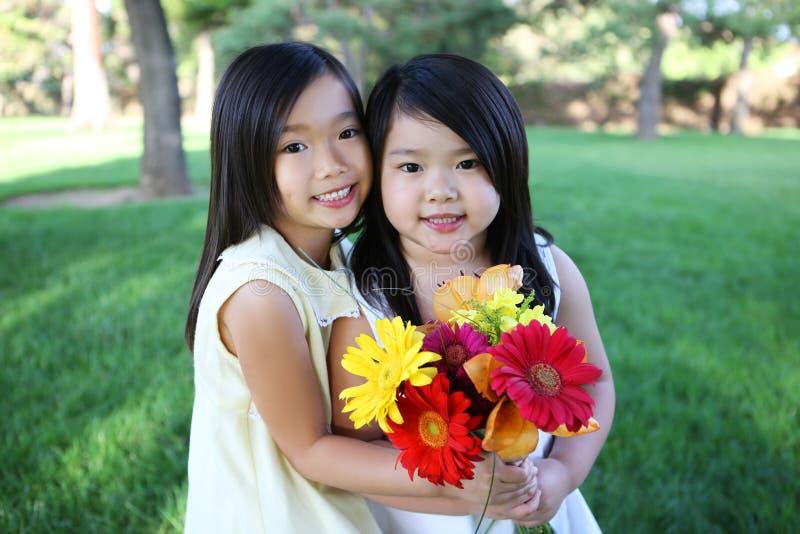 kwiat śliczne siostry zdjęcia royalty free