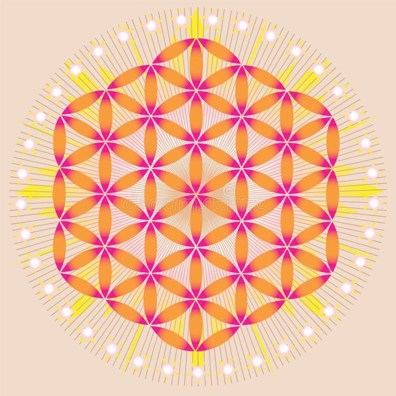 Kwiat życie w jaśnienia przestrzeni ilustracji