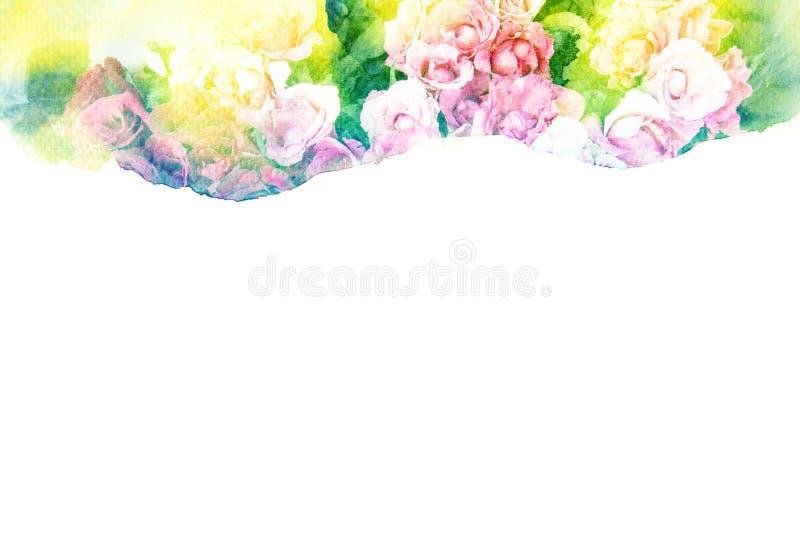 Kwiat akwareli ilustracja ilustracja wektor