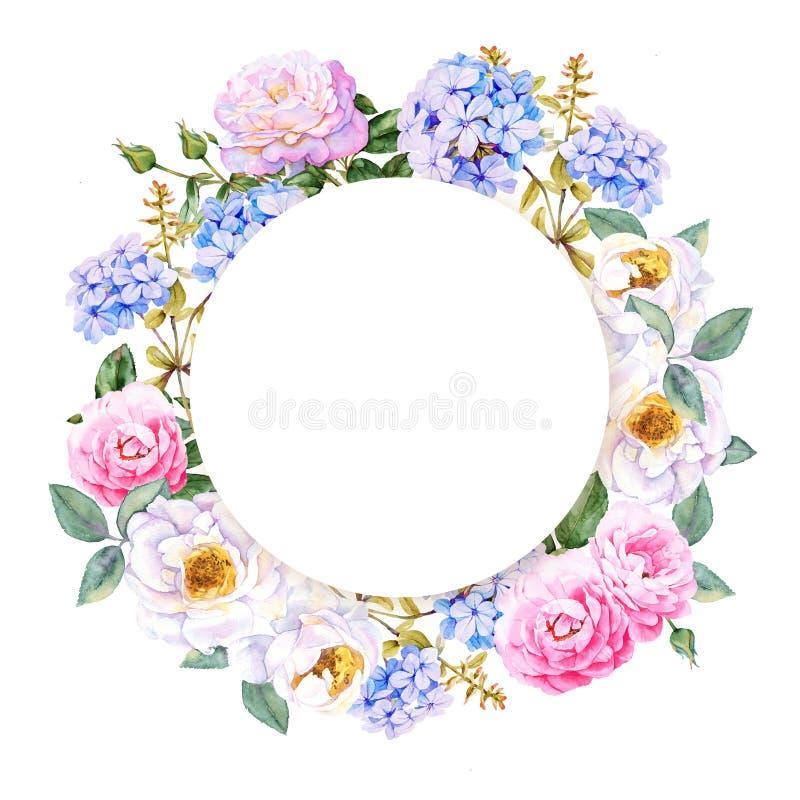 Kwiat akwareli wiosny wianek royalty ilustracja