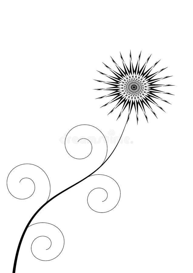 kwiat czarnego zdjęcie royalty free