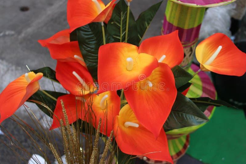 kwiat dekoracyjny obraz stock