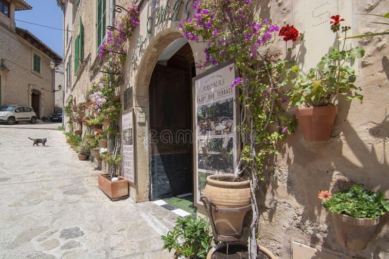 Kwiat dekorujący fasadowy malowniczy Valldemossa fotografia stock