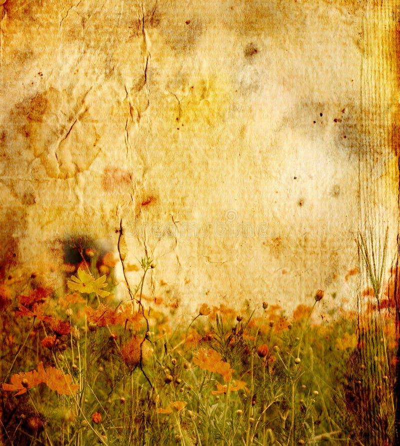 kwiat fasonujący stary obraz stock