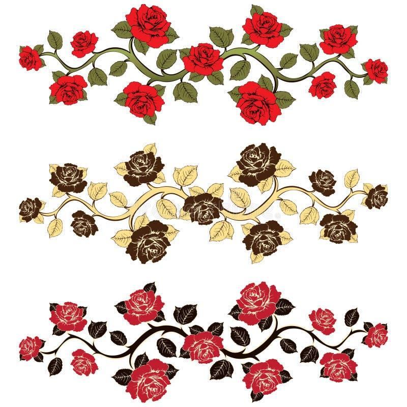 Kwiat gałęziaste róże ustawiać Ornament z różami ilustracji