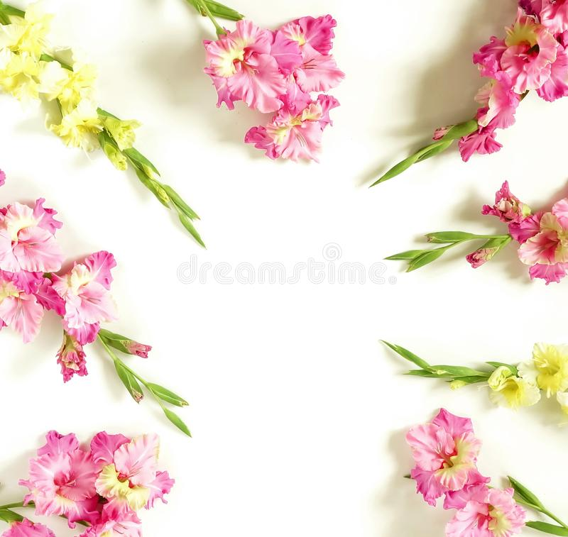 Kwiat granicy rama robi? r fotografia stock