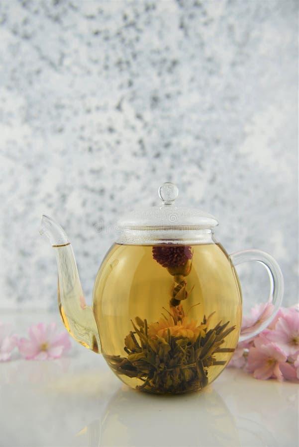 Kwiat herbata w szklanym teapot na bielu zdjęcie stock