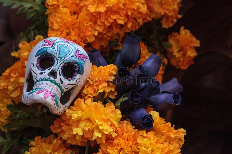 Kwiat i kościec zmieniamy przy Dia De Los Muertos zdjęcie royalty free