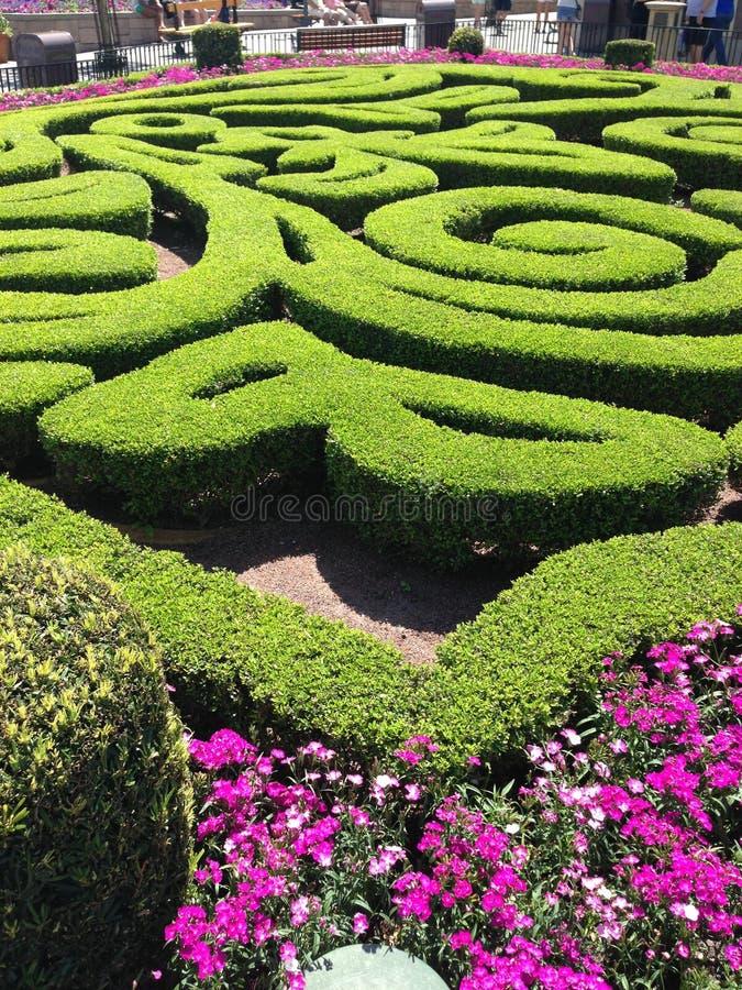 Kwiat i ogródu festiwal obrazy royalty free