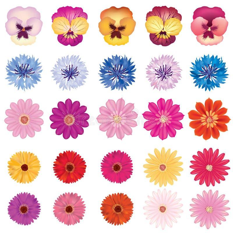 Kwiat ikony set Kwiat kolekcja na białym tle royalty ilustracja