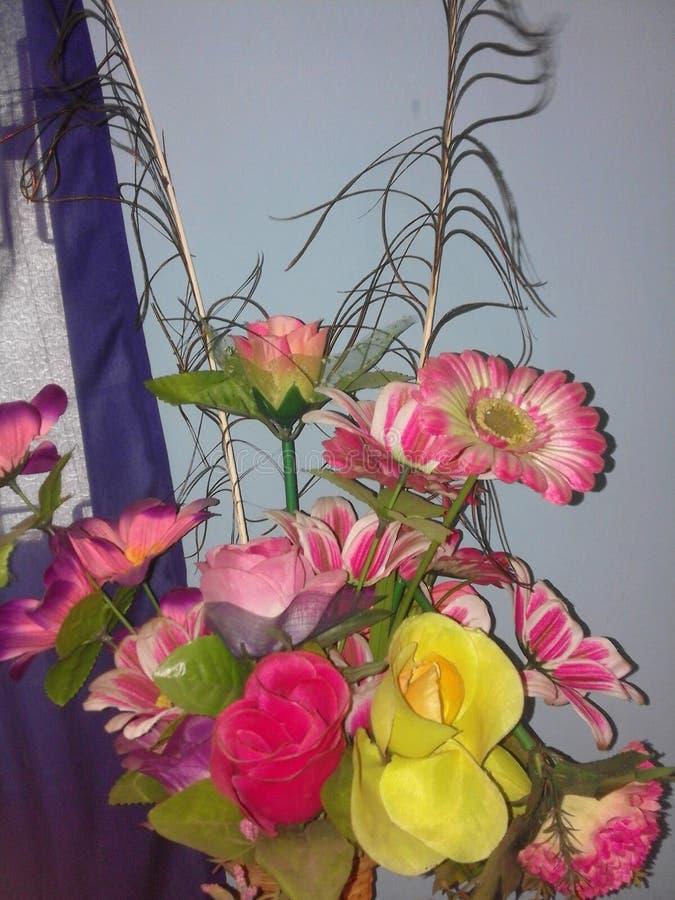 Kwiat klingeryt zdjęcia stock