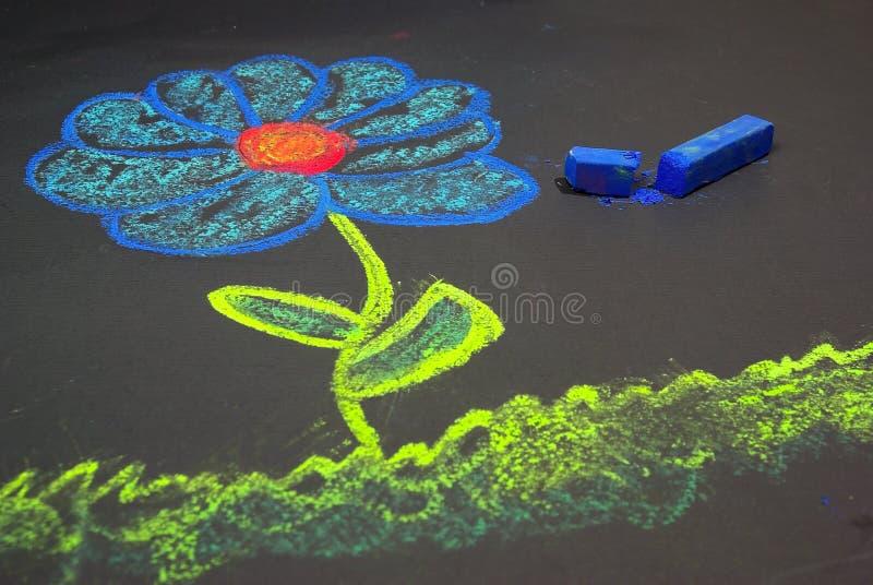 kwiat kredowy obrazy stock