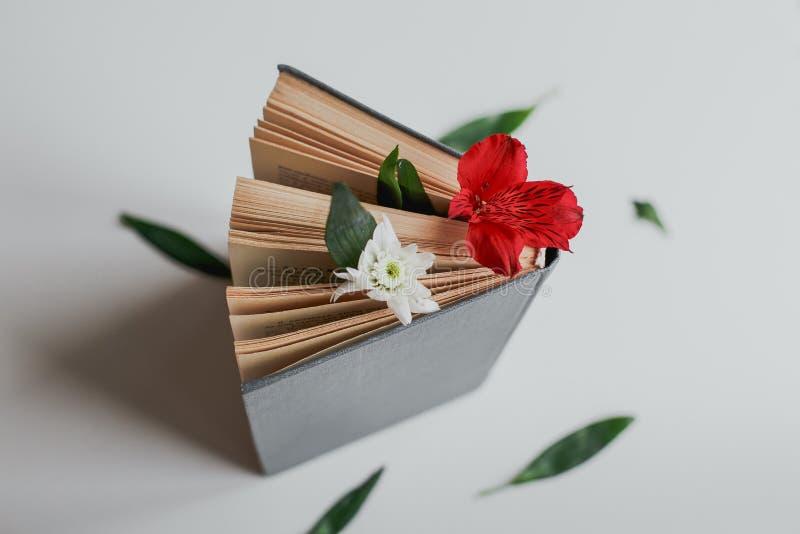 Kwiat mi?dzy stronami ksi??ka fotografia royalty free