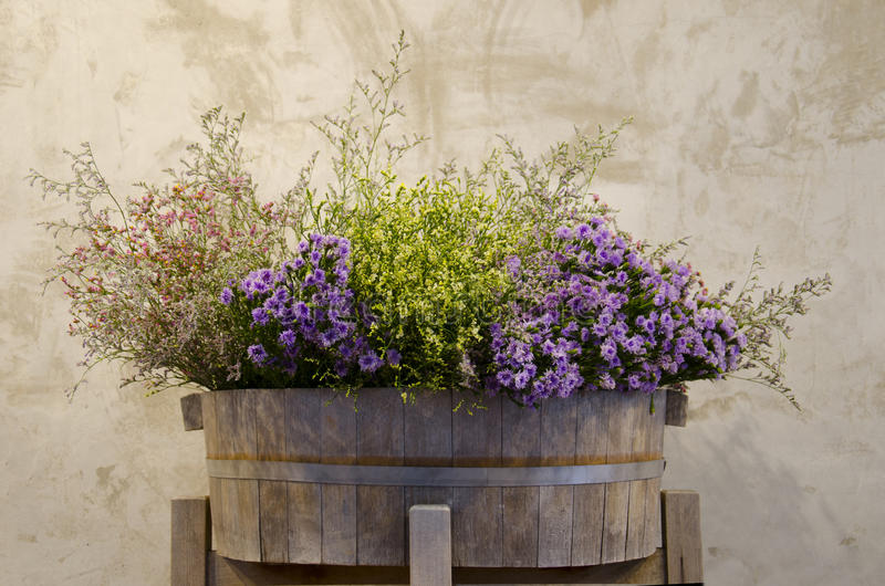Download Kwiat na drewnianym garnku obraz stock. Obraz złożonej z piękny - 57658357